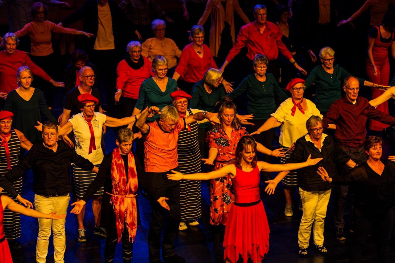 Symposium Cultuur op Recept - Stichting DeDansDivisie