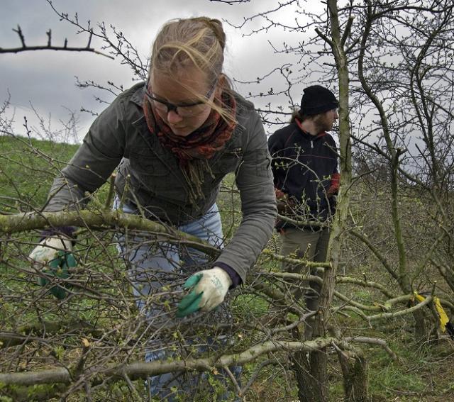 Vrijwilligers bezig met varend erfgoed